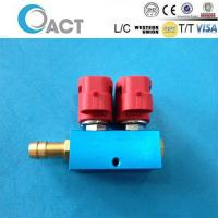 2cyl fuel injector rail for cng lpg Manufactures