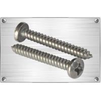 Screws Titanium raised countersunk head philips head drilling screw Manufactures