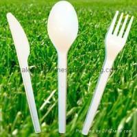 China Biodegradable Compostable Disposable Sugarcane Cutlery wholesale