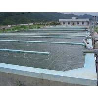 China Industrial Fish Farming projects on sale