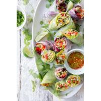 Chinese Salad Spring Rolls Manufactures