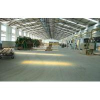 China 3-ply shuttering panel on sale