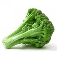 Buy cheap Broccoli Seeds Extract-Sulforaphane from wholesalers