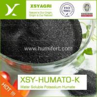 China Organic Potassium humate fertilizer 100% water solubility wholesale