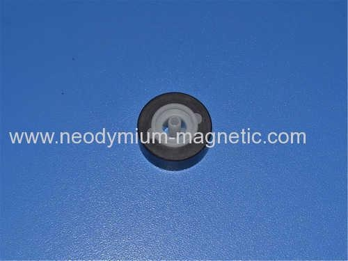 China PA6 PA12 D17.5XD1.6X9.5 Plastic Injection Ferrite Magnet Assembly