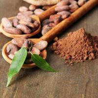 Cacao Powder Manufactures