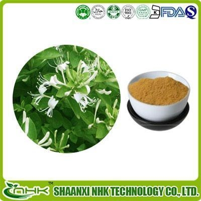 Quality HoneySuchle Flowers Extract for sale