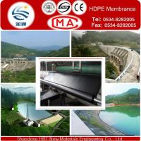 China HDPE Pond Liner HDPE Geomembrane with Best Manufacturer Price on sale