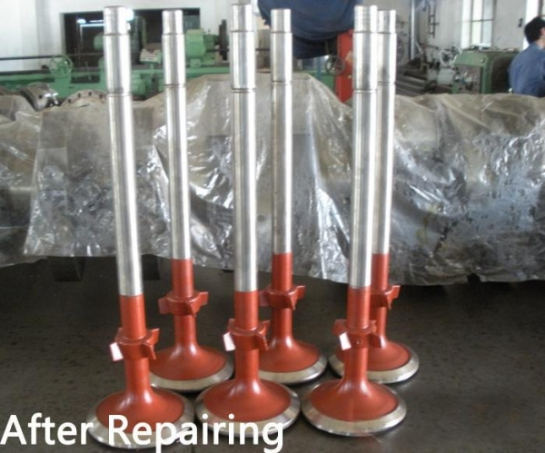 Quality Renovation Repair for Valve Spindle for sale