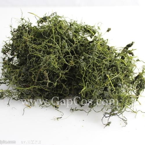 Quality High Quality Natural Gynostemma Extract--Gypenoside for sale