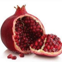 Pomegranate Fruit Peel Extract Polyphenols Manufactures