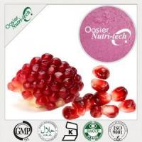 Natural Ingredient Pomegranate Fruit Powder Manufactures