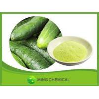Natural Excellent quality cucumber powder Manufactures