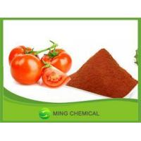 dried tomato powder/Natural High purity Dehydrated Tomato Powder Manufactures