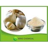 Chinese grade Eco-Friendly good solubility in water garlic powder for seasoning Manufactures