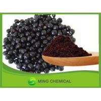 China 100% Maqui Berry Freeze Dried Powder Freeze Dried Maqui Powder on sale
