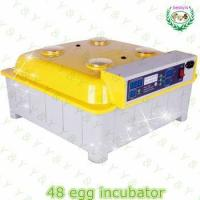 High Quality quail egg incubator/48 eggs automatic chicken egg incubator hatching machine Manufactures