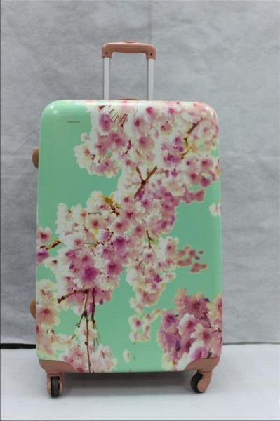 China Printed Pc Abs Luggage