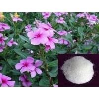 Buy cheap Periwinkle Extract powder Vinpocetine from wholesalers