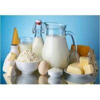 Agriculture Global Dairy Products Market Outlook (2015-2022) Manufactures