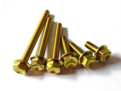 Quality Golden Anodized Titanium Bolt for sale
