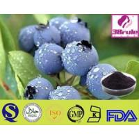 Pure Natural Acai Berry Powder Manufactures