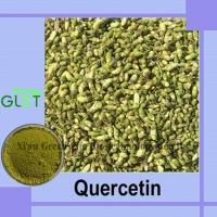 China Quercetin Dihydrate on sale