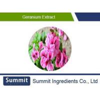 Buy cheap Geranium extract 10:1,Pelargonium hortorum,Pelargonium extract from wholesalers