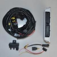 China 300 Sequential Kit Lpg/cng Ecu... 300 Sequential Kit Lpg/cng Ecu For 3/4/6/8 Cylinder Cars on sale