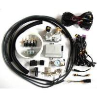 China CNG conversion kit single point injector system for car on sale