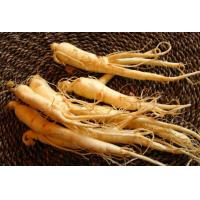 Ginseng Extract Manufactures