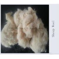 China Clean Wool Waste Best sale wholesale