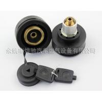 China gas charging valve for LPG conversion kit on sale