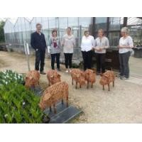 Buy cheap Animal Sculpture Workshops - North Yorkshire from wholesalers