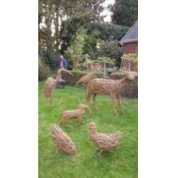 kate morrell willow sculpture courses - Leicestershire Manufactures