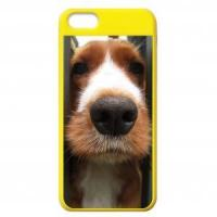 China For Iphone 5 Custom Colorful Cases for iPhone 5C on sale