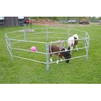 China Corral Panels for Keeping Horses and Cattle on sale