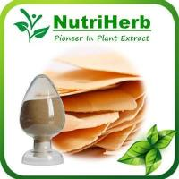 China OrganicTongkat Ali Extract,Tongkat Ali Extract Powder,Tongkat Ali 200:1 Extract Powder on sale