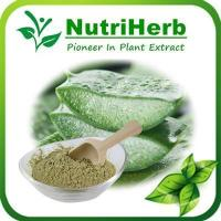 Quality Natural Aloe Powder,Aloe Vera Powder,Aloe Vera Gel ,Powder Aloe ,Vera Gel Freezed Dried Powder for sale
