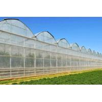 obove 93% transmittance greenhouse film Manufactures