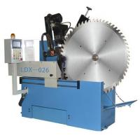 LDX-026 Full-automatic CNC Front and Rear Angle Gear Grinding Machine (Outer Diameter: 800~2,000) Manufactures