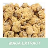 maca root powder/sexual stimulation function as raw material for medicine Manufactures