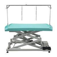 Grooming Table FT-823/833 Plastic Top Electric Lifting Table Manufactures