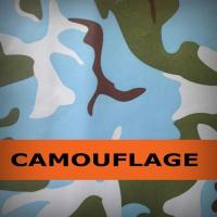 300D Camouflage fabric Manufactures