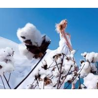 China A world of pure natrual-cotton, wool, silk, liene and ramin on sale