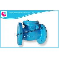 Cast Iron DIN BS EN ANSI JIS KS GOST PN16 PN10 H44T-16 Check Valve Factory Manufactures