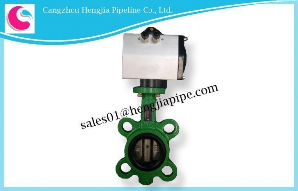 China Cast Iron/Brass/Stainless Steel Lug Style Flanged Butterfly Valve
