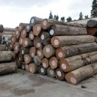 China New Trendy Products 4 / 5 / 6 Grade Indian Teak Wood Price for Sale on sale