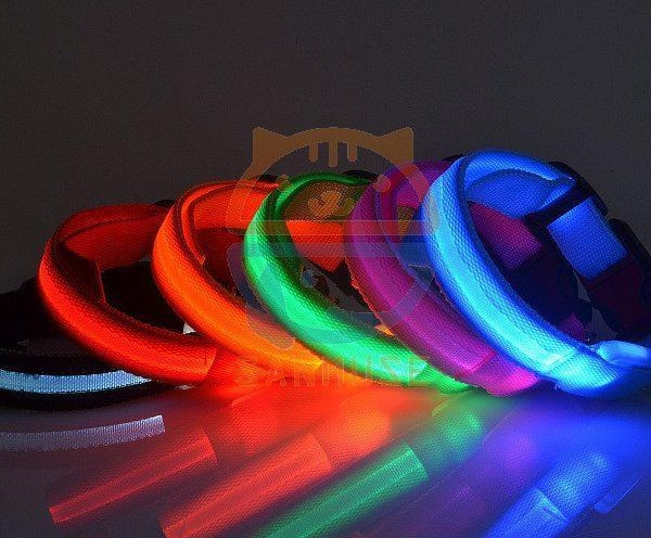 Quality Led Pet Products 2.5cm LED Dog Nylon Collar Safety necklace Flashing Lighting Up Collar for sale