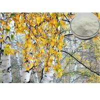 China White Birch Extract Natural white birch bark extract of Betulinic Acid,CAS:473-98-3 on sale